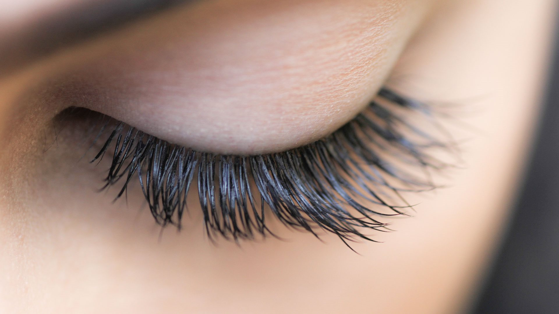 Eyelash Structure, Care and Causes of Eyelash Loss