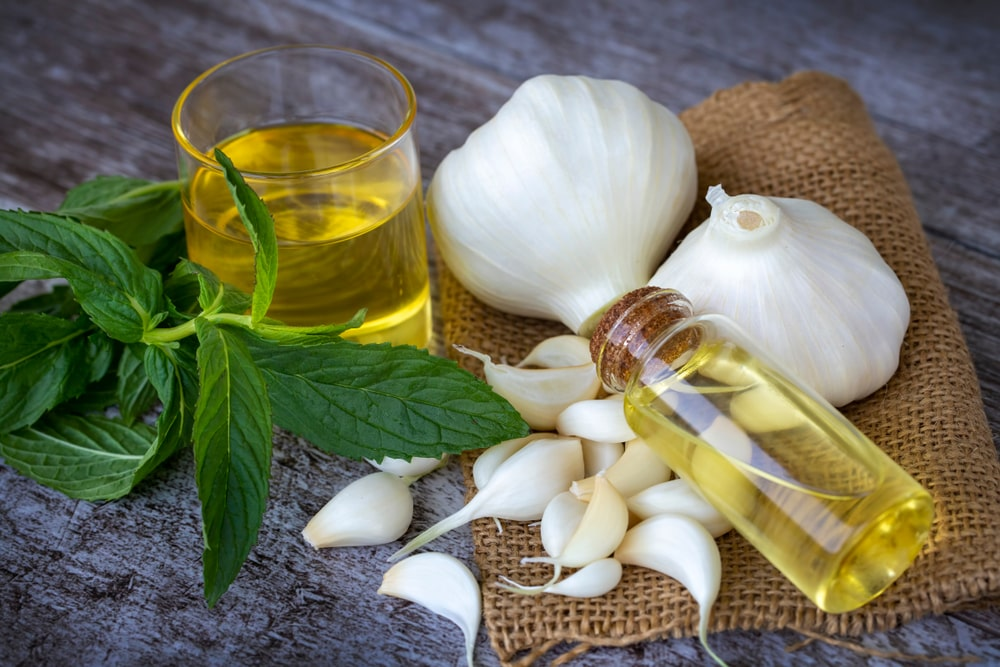 How to Take Care of Your Hair with Garlic